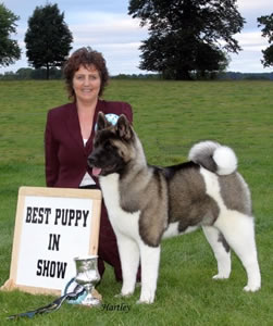 Sophie winning Best Puppy